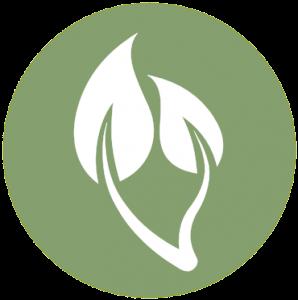 Aromatherapie icon voorpagina shaman connect