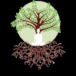 logo shaman connect